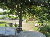 2011.9.11-9.12台南兩日遊:IMG_7683.JPG