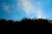 2010.08.03.恆春半島:DSC_0033.jpg
