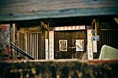 2011.01.26.安平老街、四草小碼頭芒草:DSC_0180.jpg