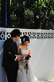 2008.11.05.肉&墨香拍婚紗一日快閃體驗:DSC_0012.JPG