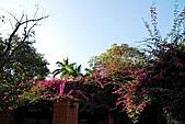 2008.12.10.台南公園及其週邊:DSC_0035.JPG