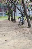 2010.03.03.東豐路、台南公園、湖美社區、安平海邊:DSC_0011.jpg