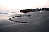 2009.05.10.安平海邊:DSC_0029.JPG