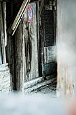 2011.01.26.安平老街、四草小碼頭芒草:DSC_0175.jpg