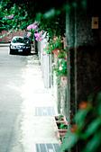 2010.11.03.兵配廠:DSC_0031.jpg