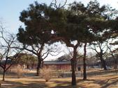 2014一月十九日首爾春遊:P1190273.JPG