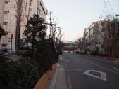 2014一月十九日首爾春遊:P1190260.JPG