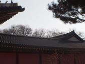 2014一月十九日首爾春遊:P1190277.JPG