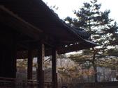 2014一月首爾春遊:P1180107.JPG