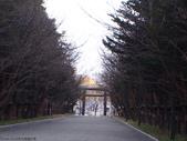 2014末北海道之旅:P1019164.JPG