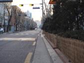 2014一月十九日首爾春遊:P1190261.JPG