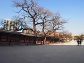 2014一月十九日首爾春遊:P1190271.JPG