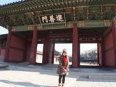 2014一月十九日首爾春遊:P1190279.JPG