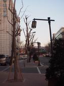 2014一月十九日首爾春遊:P1190264.JPG