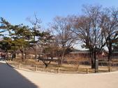 2014一月十九日首爾春遊:P1190272.JPG