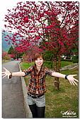 2009.2.14 Anita:DSC_7008.jpg