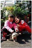 09.1.27 布朗尼,阿福,妹妹:DSC_3844.jpg