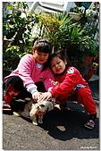 09.1.27 布朗尼,阿福,妹妹:DSC_3846.jpg