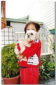 09.1.27 布朗尼,阿福,妹妹:DSC_3849.jpg