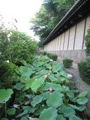 20080719大阪:080719 (03).JPG