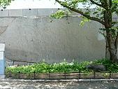 20080719大阪:080719 (23).JPG