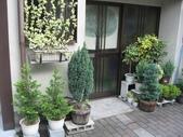 20080719大阪:080719 (08).JPG