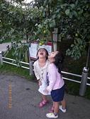 20140720-梨山、福壽山、八卦山之旅:IMGP0385-福壽山農場.JPG
