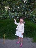 20140720-梨山、福壽山、八卦山之旅:IMGP0381-福壽山農場.JPG