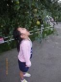 20140720-梨山、福壽山、八卦山之旅:IMGP0387-福壽山農場.JPG