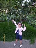 20140720-梨山、福壽山、八卦山之旅:IMGP0383-福壽山農場.JPG