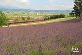 富田農場:IMG_5586.JPG