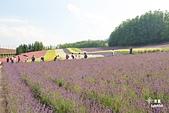 富田農場:IMG_5545.JPG