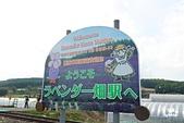 富田農場:IMG_5495.JPG