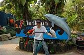 泰國五日行:賽福瑞野生動物海洋世界