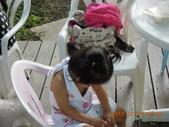我瘋了之2011宜蘭國際童玩藝術節連玩二天:DSCN0894.JPG