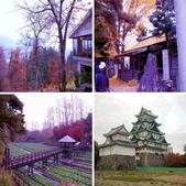 2012.12;日本國江戶城旅拍:相簿封面
