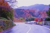 2012.12;日本國江戶城旅拍:367.JPG