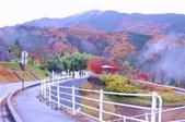 2012.12;日本國江戶城旅拍:370.JPG