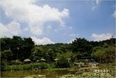 2011-08-21 埔里紙教堂:埔里紙教堂003.jpg