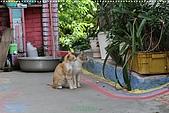 2010-06-07 再訪彩繪街外拍:台中-彩繪之旅外拍087.JPG