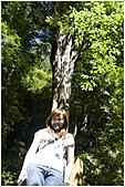2010-07-04 拉拉山二日遊---拉拉山神木群:拉拉神木群-04號-4.jpg