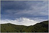 2010-07-04 拉拉山二日遊---拉拉山神木群:拉拉神木群005.jpg