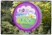 2010-05-01 新社---金針花海:新社金針花海001.jpg