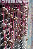 2010-06-07 再訪彩繪街外拍:台中-彩繪之旅外拍202.jpg