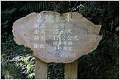 2010-07-04 拉拉山二日遊---拉拉山神木群:拉拉神木群-02號-1.jpg