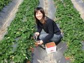採草莓:1350640624.jpg