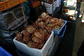 日本函館東北賞楓(二):煮熟的毛蟹