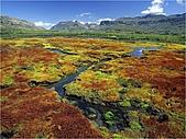 驚艷的非洲:聖達柏高山上荒野,南非