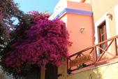 希臘15日深度之旅--西羅斯島(syros):IMG_2340西羅斯島.JPG