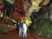09.12.03-07 京都大阪快樂自由行-第一天:IMG_4995.JPG